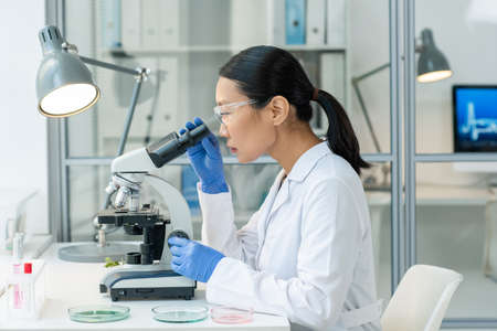 Young Asian female laboratory worker studying sample of raw meat in microscope