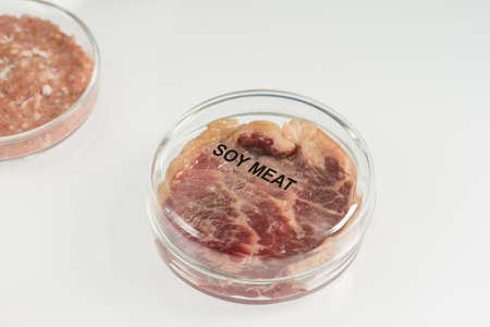 Covered petri dish containing piece of raw laboratory grown soy meat 版權商用圖片