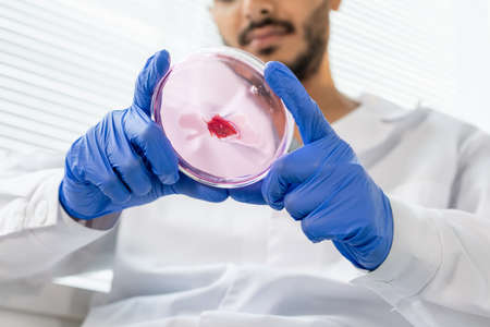 Gloved hands of food quality control worker holding tiny sample of raw meat