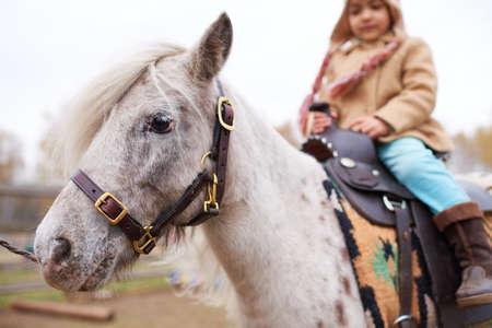 Little Girl Riding Appaloosa Pony
