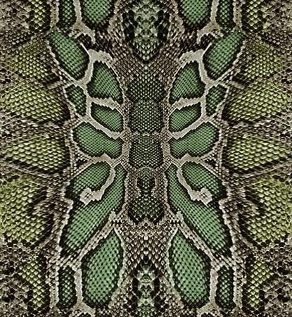 serpent: Snakeskin
