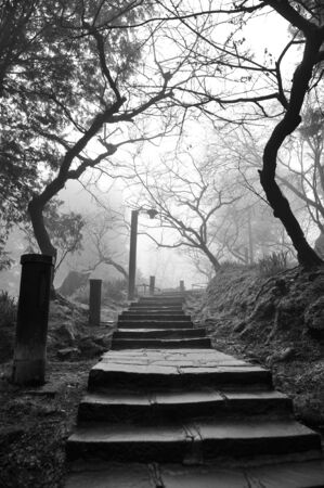 eerie: Eerie pathway to a cemetery Stock Photo