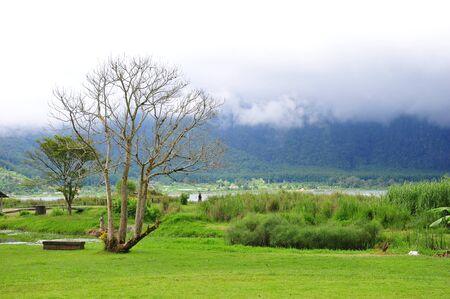 Park beside Bratan Lake in Bali, Indonesia, near the famous Ulun Danu Bratan temple photo