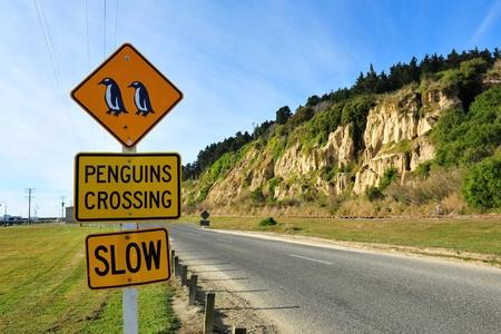 pinguinera: Ping�inos cruzar se�al de tr�fico cerca de Blue colonia de Ping�inos en Oamaru, Nueva Zelanda Foto de archivo