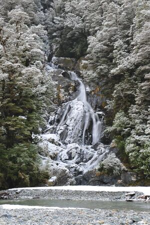 fantail: Fantail falls in New Zealand Stock Photo