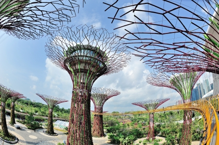 Super trees grove vertical garden and OCBC Skyway at newly opened Gardens by the Bay in Singapore Editorial