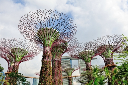 Super trees grove vertical garden at newly opened Gardens by the Bay in Singapore Editorial