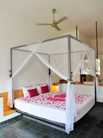 Queen size bed with romantic rose petals decor in a luxury apartment room