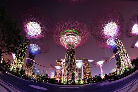 Super trees and OCBC skyway in the newly opened Gardens by the Bay in Singapore
