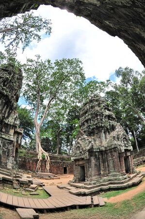 raider: Courtyard of Ta Prohm  also known as Tomb Raider  temple in Siem Reap, Cambodia