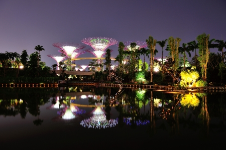 Reflection of super trees at Gardens by the Bay in Singapore