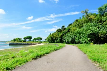 lazarus: Quiet path through the nature park on Lazarus Island, Singapore Stock Photo