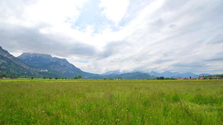 Field in Bavaria with famous Neuschwanstein Castle and alps in the background photo