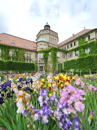 Colorful flowers in front of Botanic Institute of Munich Botanical Garden in Germany