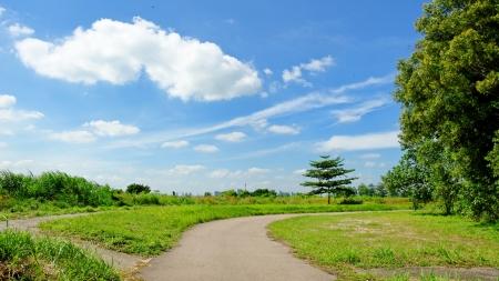 lazarus: Meadow on Lazarus Island, Singapore
