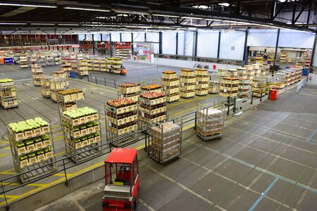 transact: AMSTERDAM - SEPTEMBER 22: Carts with flowers being sorted at Aalsmeer FloraHolland, taken on September 22, 2014 in Amsterdam, Netherlands