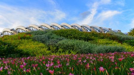 jardines con flores: Cúpula de la flor en los jardines junto a la bahía en Singapur