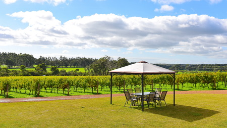 western australia: Outdoor dining area at a vineyard at Margaret River, Western Australia