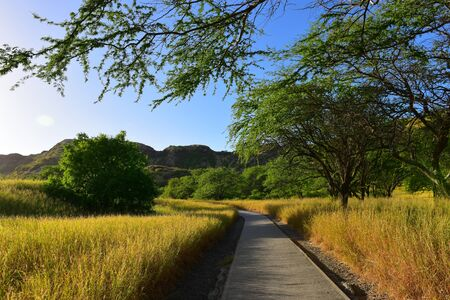 Trail leading to the summit of Diamond Head volcano, Oahu, Hawaii Stock Photo