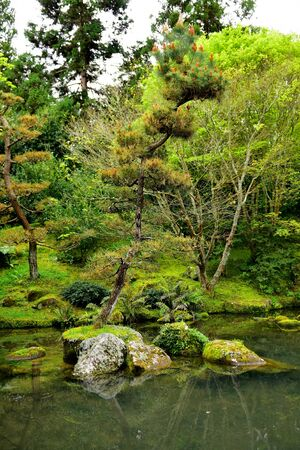 Japanese Garden of Contemplation in Hamilton Gardens in New Zealand Stock Photo