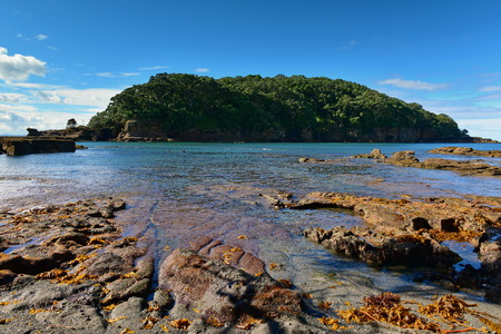 Goat Island Marine Reserve, popular for beach activities and snorkelling in New Zealand Stock fotó