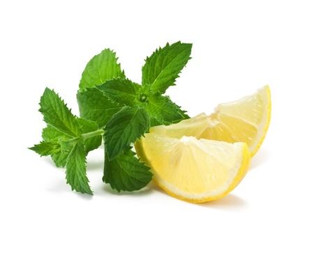 menta: Rodajas de limones con menta sobre un fondo blanco   Foto de archivo