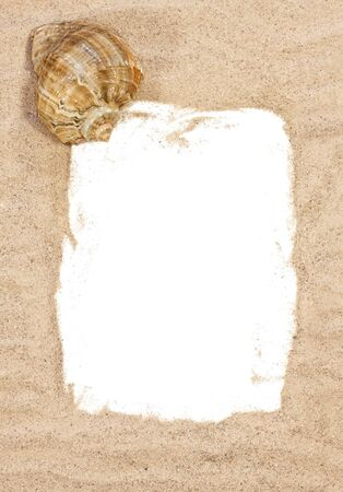 Sea shell with beach sand over white background photo