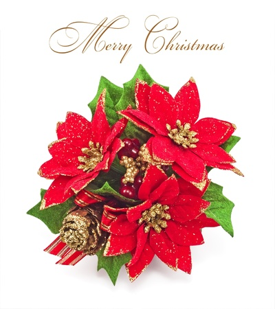 christmas decoration on a white background  photo