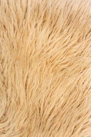 artificial fur textures  photo