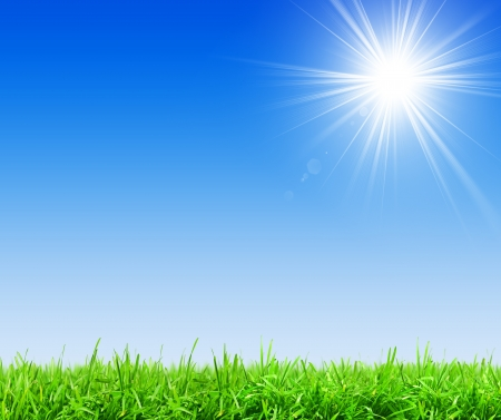 sunbeam: Green grass and clear blue sky