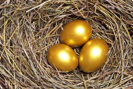 Three golden eggs in the hay nest  photo