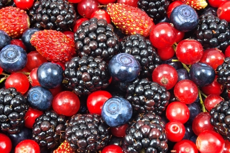 ensalada de frutas: diferentes bayas frescas como fondo Foto de archivo