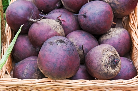 Fresh red beets in the basket Stock Photo - 15410597