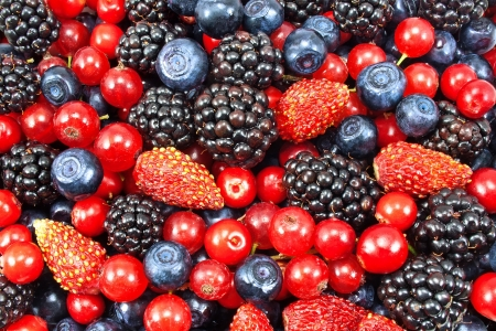 organic raspberry: different fresh berries as background
