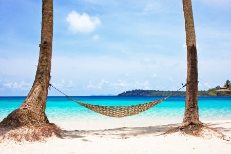 Hammock between palm trees on beautiful tropical beach photo