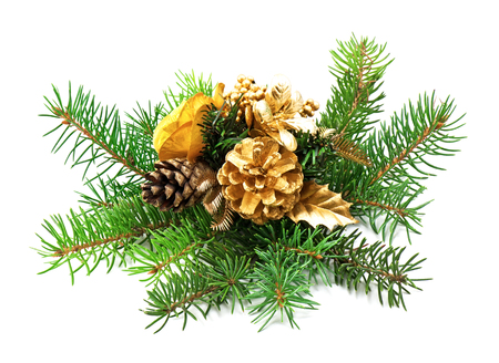 festive pine cones: Christmas decoration on a white background