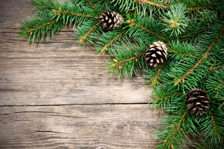 xmas card: Christmas fir tree on a wooden background