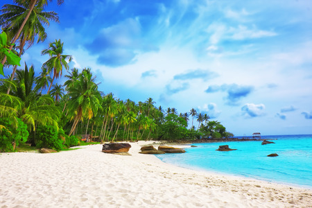 kood: Palm trees in tropical perfect beach at Koh Kood , Thailand Stock Photo