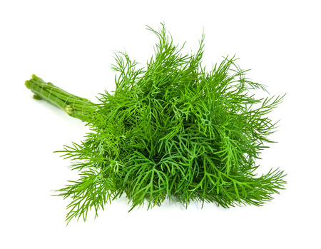 fresh dill isolated on white  Фото со стока