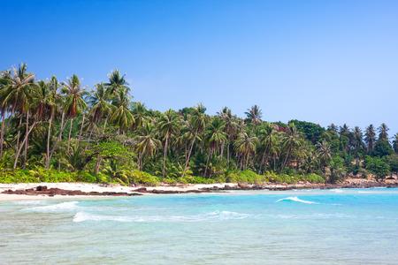 kood: Tropical white sand beach with palm trees. Koh Kood, Thailand Stock Photo
