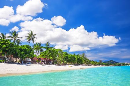 koh: Arena blanca tropical con palmeras en la playa de Chaweng. Koh Samui, Tailandia