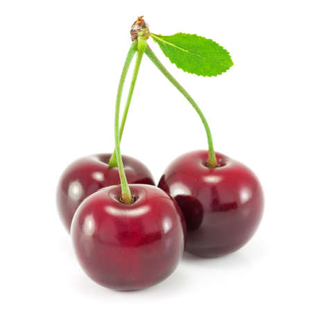 sour cherry: Cherries with leaf isolated on white background