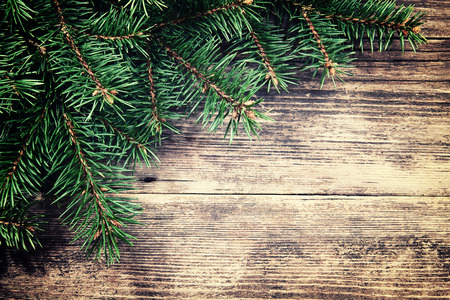 Christmas fir tree on a wooden background photo