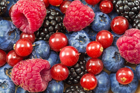 berries: different fresh berries as background