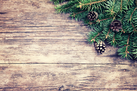grunge border: Christmas fir tree on a wooden background