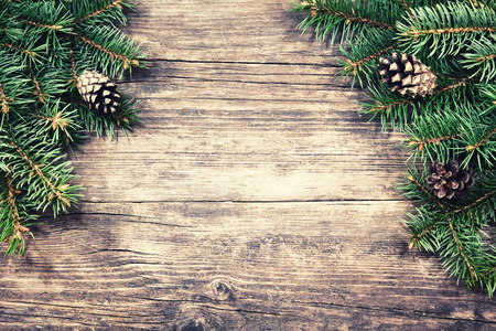 pine tree needles: Christmas fir tree on a wooden background, vintage style