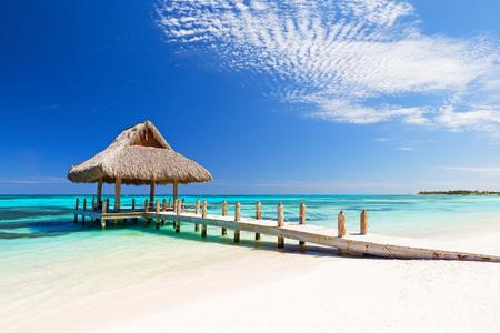 blue lagoon: Bella spiaggia tropicale di sabbia bianca a Cap Cana, Repubblica Dominicana