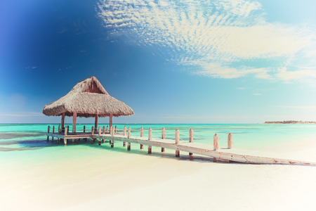 모자 Cana, 도미니카 공화국의 아름다운 열대 하얀 모래 해변의 빈티지 그림 스톡 콘텐츠 - 62066718