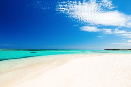 cana: Beautiful white sandy beach in Punta Cana, Dominican Republic
