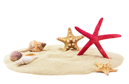 Sea shells and sand, isolated on white background Archivio Fotografico